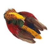 Wapsi Golden Pheasant Whole Skin