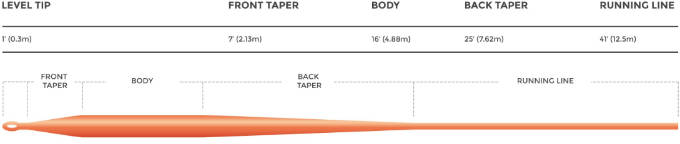 WEIGHT FORWARD TAPER PROFILE