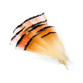 Wapsi Golden Pheasant Medium Tippets